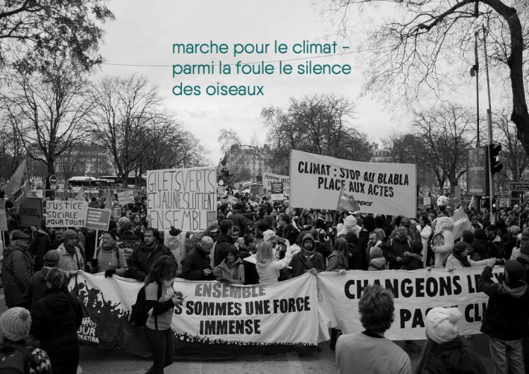 marche_pour_le_climat-png-pngf